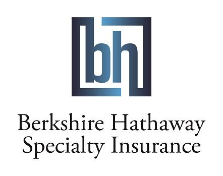 BHSI Logo